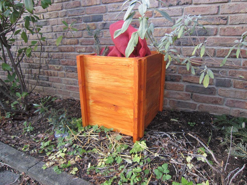 Winterschutz für Gartenpflanzen